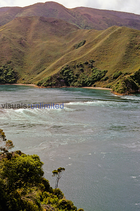 Coastal view with famous rip tide through French Pass. Mainland on left, D'Urville Island on right. January. Marlborough Sounds, New Zealand. Photographer G. R. 'Dick' Roberts © Natural Sciences Image Library.