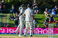 Ish Sodhi and Colin De Grandhomme of the Black Caps get to 50 runs parternship during the final day of the Second International Cricket Test match, New Zealand V England, Hagley Oval, Christchurch, New Zealand, 3rd April 2018.Copyright photo: John Davidson / www.photosport.nz