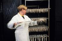Europe/France/Nord-Pas-de-Calais/59/Nord/Flandre/Grand-Fort-Philippe: A la saurisserie Nathalie Dutriaux - Spécialités de produits fumés de la mer,filets de harengs fumés doux et filets marinés du Nord Pas-de-Calais  & marinades //   France, Nord, Flanders, Grand Fort Philippe, Nathalie Dutriaux At the smoked fish, smoked specialties from the sea, smoked herring fillets marinated fillets of mild and Nord Pas de Calais and marinades  [Non destiné à un usage publicitaire - Not intended for an advertising use]