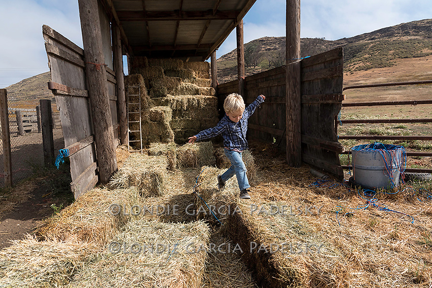 Little boy playing on the haybales