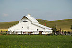 White barn with eagle over the door in the Sand Hills of Nebraska.