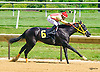 What About Tonight winning at Delaware Park on 7/2/16