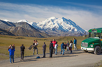 Tourist from a Denali Park bus tour view the summit of Denali from Stony Dome, Denali National Park, Alaska.