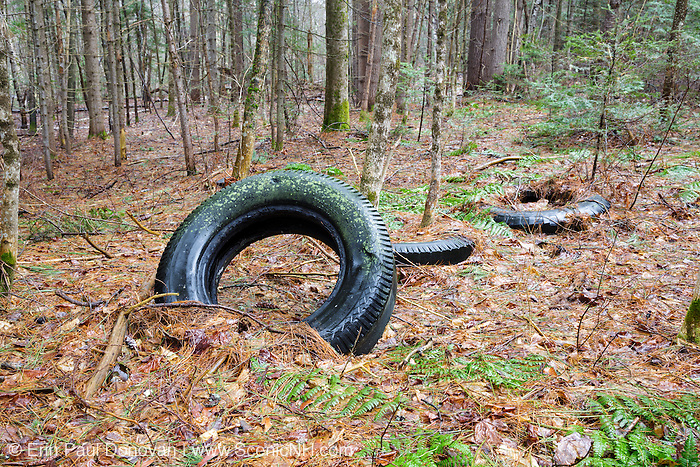 Abandoned tires in forest along Route 112 in Easton, New Hampshire USA.