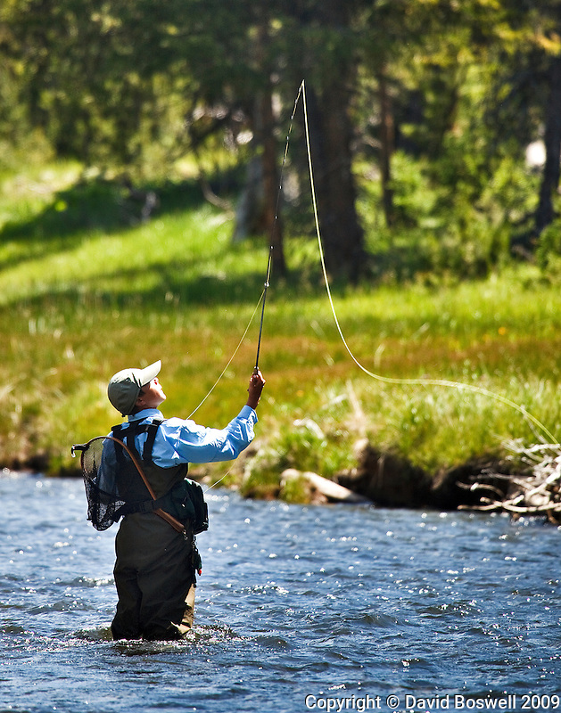 My son Ethan fly fishing on the Gibbon River in Yellowstone National Park.