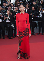 Liu Wen at the premiere for &quot;The Beguiled&quot; at the 70th Festival de Cannes, Cannes, France. 24 May 2017<br /> Picture: Paul Smith/Featureflash/SilverHub 0208 004 5359 sales@silverhubmedia.com