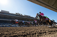 DEL MAR, CA - NOVEMBER 04: The field of horses along the first stretch during the 14 Hands Winery Breeders' Cup Juvenile Fillies on Day 2 of the 2017 Breeders' Cup World Championships at Del Mar Thoroughbred Club on November 4, 2017 in Del Mar, California. (Photo by Alex Evers/Eclipse Sportswire/Breeders Cup)
