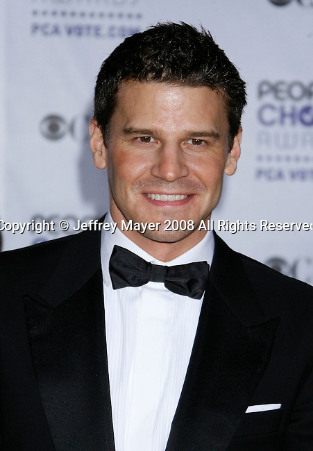 LOS ANGELES, CA. - January 07: Actor David Boreanaz arrives at the 35th Annual People's Choice Awards held at the Shrine Auditorium on January 7, 2009 in Los Angeles, California.