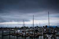 On a winter evening, sail boats with bare masts hold court at the San Leandro Marina on San Francisco Bay.