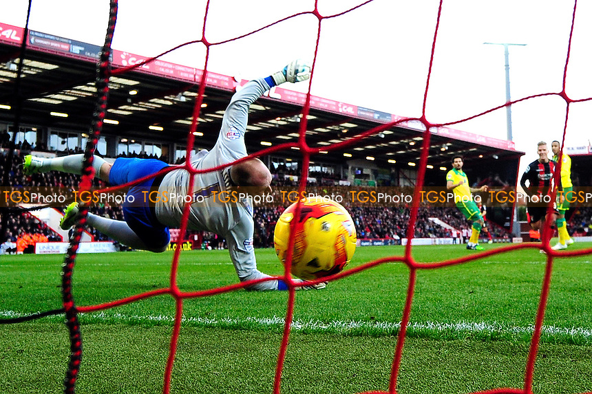 AFC Bournemouth vs Norwich City | TGS PHOTO LTD - Editorial