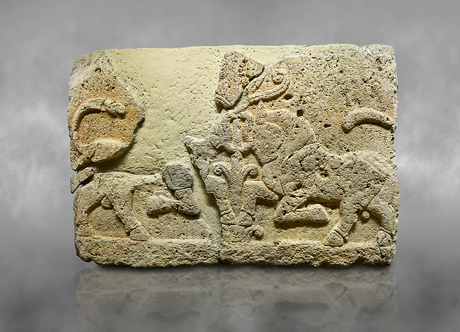 Hittite relief sculpted orthostat stone panel of Herald's Wall Limestone, Karkamıs, (Kargamıs), Carchemish (Karkemish), 900-700 B.C. Anatolian Civilisations Museum, Ankara, Turkey.<br /> <br /> A pair of kneeling bull on either side of the tree of life, one each foot is on the tree, the other feet are bend towards the abdomen.  <br /> <br /> Against a grey art background.