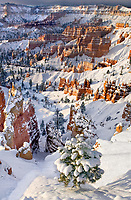 730750097c a peaceful sunrise lights up snow covered hoodoos seen from sunset point in bryce canyon national park utah