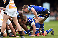 Will Chudley of Bath Rugby looks to put the ball into a scrum. Gallagher Premiership match, between Bath Rugby and Wasps on May 5, 2019 at the Recreation Ground in Bath, England. Photo by: Patrick Khachfe / Onside Images