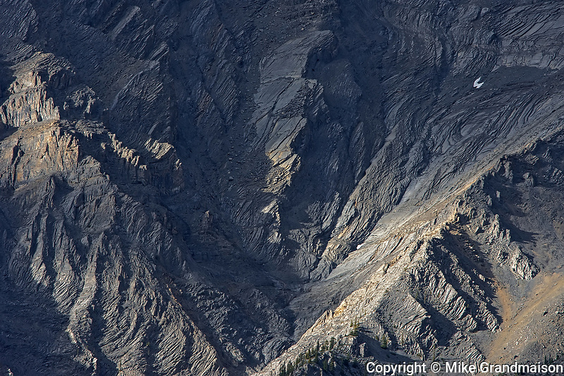 Detail of The Canadian Rocky Mountains, Kootenay National Park, British Columbia, Canada
