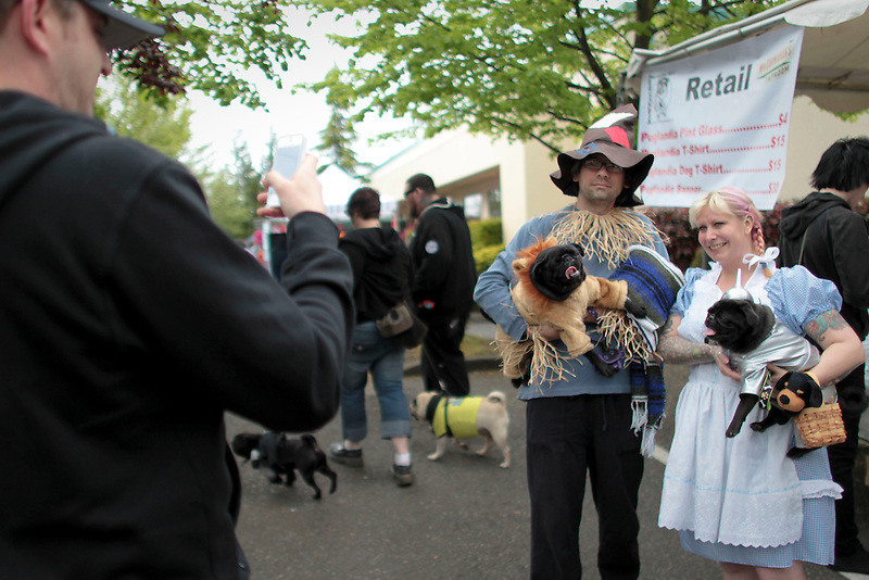 Dog owners dress up themselves and their pugs as Wizard of Oz characters at Portland's annual Pug Crawl.