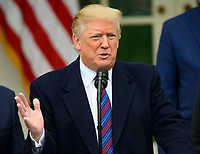 United States President Donald J. Trump makes a statement following his meeting with Democratic leaders in the Situation Room of the White House in Washington, DC in an effort to break the political impasse on border security and reopen the federal government on Friday, January 4, 2018.  The President also took questions from reporters. Photo Credit: Ron Sachs/CNP/AdMedia