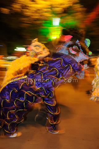 Asia, Vietnam, Hanoi. Hanoi old quarter. Tet. Festival of the First Day or Tet Nguyen Dan.