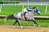 Gabo winning at Delaware Park on 6/8/17