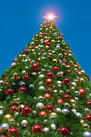 Tall 90 foot, Christmas Trees, Gold Star Shining, Xmas, Holiday, Decorations, Tree Decorated, Balls, Lights,