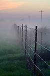 Fence in field near road in fog at sunrise, rural Merced County, Central Valley, California