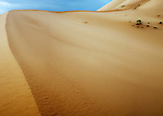 Lyrical sand dunes cut clean lines across the windswept Sahara Desert