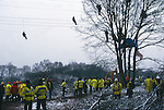 Trees occupied by protesters, stopping tree cutting being carried out. Newbury road protest