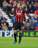 Steve Cook of AFC Bournemouth during AFC Bournemouth vs Manchester United, Premier League Football at the Vitality Stadium on 3rd November 2018