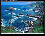 Got a bad case of poison ivy here. Garrapata State Park, Pacific coast, Crescent City, California. John offers private photo tours in Washington and throughout Colorado. Year-round.