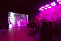 55th Art Biennale in Venice - The Encyclopedic Palace (Il Palazzo Enciclopedico).<br /> Giardini. Denmark Pavilion.<br /> Jesper Just (Denmark). &quot;Intercourses&quot;, 2013.