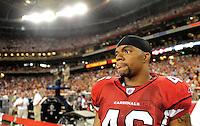 Aug. 28, 2009; Glendale, AZ, USA; Arizona Cardinals fullback (46) Tim Castille against the Green Bay Packers during a preseason game at University of Phoenix Stadium. Mandatory Credit: Mark J. Rebilas-