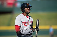 Salt River Rafters right fielder Daniel Johnson (7), of the Washington Nationals organization, during an Arizona Fall League game against the Mesa Solar Sox at Sloan Park on November 9, 2018 in Mesa, Arizona. Mesa defeated Salt River 5-4. (Zachary Lucy/Four Seam Images)