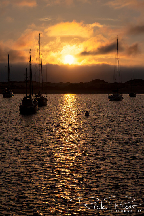 The setting sun leaves a golden path on the water of Morro Bay along California's Central Coast
