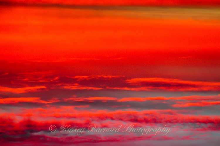&quot;PINK LADY SUNSET&quot;<br />