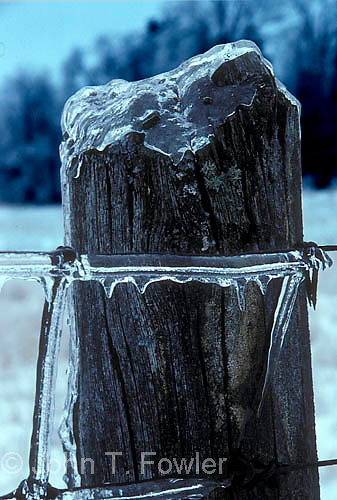 Ice frozen on fence post during ice storm