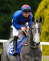 Greyzee ridden by William Carson goes down to the start  of The Bathwick Car & Van Hire Novice Auction Stakes (Plus 10 )during Afternoon Racing at Salisbury Racecourse on 12th June 2018