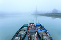 France, Indre-et-Loire (37), Amboise, la pagode de Chanteloup un jour de brouillard