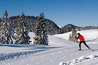 Deutschland, Bayern, Chiemgau - Reit im Winkl: Paradies fuer Langlaeufer auf der Winklmoosalm - Geburtsort der Rosi Mittermaier (Olympiasiegerin im Abfahrtslauf und Slalom 1976 in Innsbruck) | Germany, Bavaria, Chiemgau - Reit im Winkl: cross country ski run at Winklmoosalm