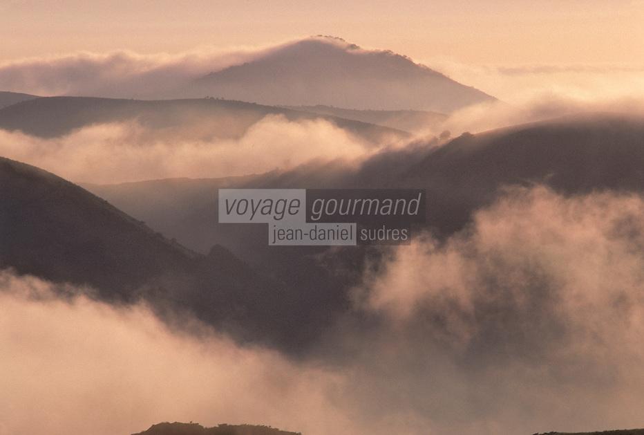 Europe/France/Aquitaine/64/Pyrénées-Atlantiques/Pays de Cize: Le col de Burdincurutcheta au soleil levant