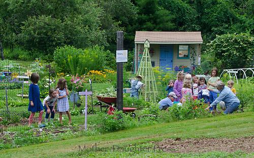Children at Yarmouth Community garden camp, Maine, USA