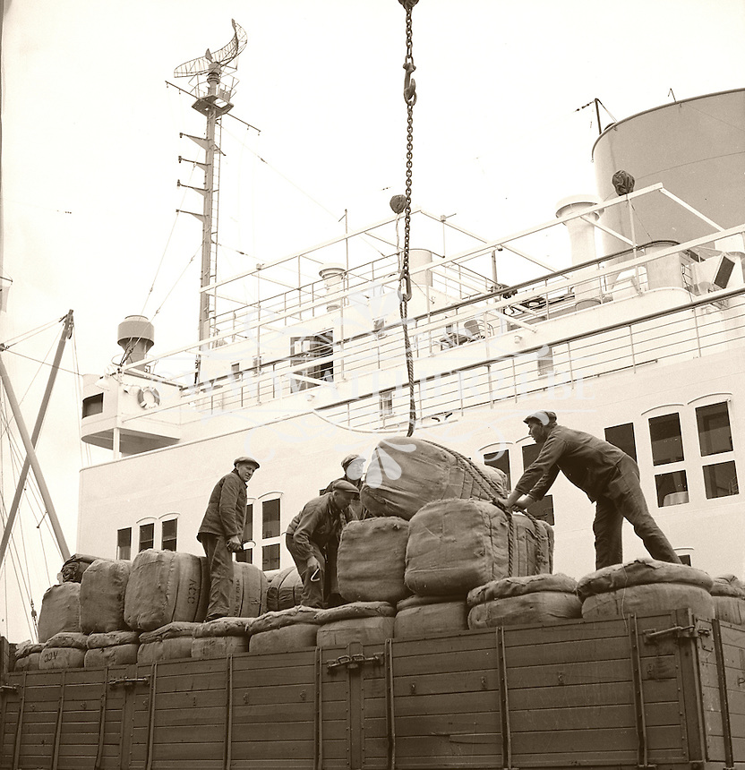 Dokwerkers in de haven van Antwerpen in 1966.