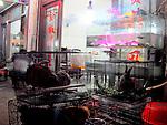 huangshan restaurant