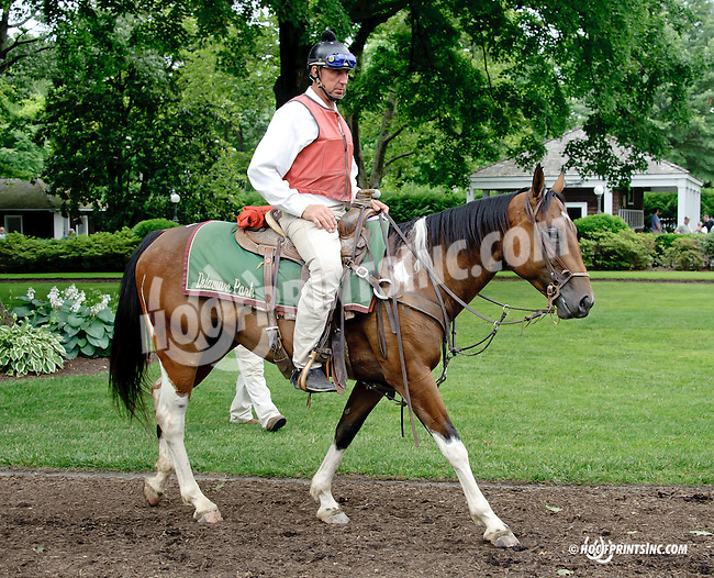 Lance at Delaware Park racetrack on 6/19/14