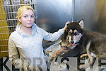 Vicki Kennelly from Shanakill and her dog Neeko who was attacked by another dog. Pictured at Hurley's Veterinary Hospital on Monday.