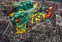 Composting materials added to compost heap, showing garden and kitchen waste to decompose