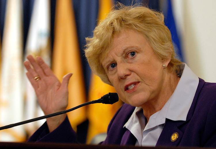 Rep. Ginny Brown-Waite, R-Fla., questions witnesses during a hearing on safeguarding veteran's personal data and the recent theft of sensitive information belonging to as many as 26.5 million veterans