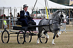 Orsett. United Kingdom. 07 September 2019. Grand display ring. Orsett Horticultural and agricultural show. Essex. UK.~ 07/09/2019.  MANDATORY Credit Garry Bowden/Sport in Pictures - NO UNAUTHORISED USE - 07837 394578