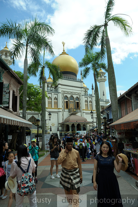 the magnificent Sultan Mosque