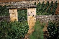 Europe/France/Bourgogne/21/Côte d'Or/Puligny Montrachet: Détail Portail Grand Montrachet - Porte du vignoble du Domaine Jacques Prieur