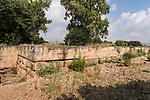 Ruins of the Old Testament city of Dan in the Tel Dan Nature Reserve in Galilee in northern Israel.
