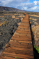 Wooden Bridge over Pu'u Loa petroglyphs, Kilauea Volcano, Big Island, Usa  (Licence this image exclusively with Getty: http://www.gettyimages.com/detail/85985775 )